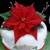 "Gumpaste Poinsettia On Lighted Cake I wired some branches with a battery operatated led light set and make a gumpaste poinsettia for the center. 10"" white cake with..."