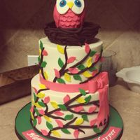 "Owl Cake Based on ""Look Whooo's One"" party decor... With matching smash cake."