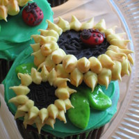 "Sunflower Cupcakes from ""Hello Cupcake!"" by Karen Tack"