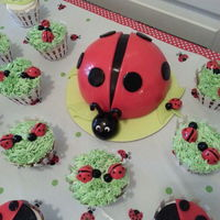 Ladybug Smash Cake With Matching Cupcakes Ladybug smash cake with matching cupcakes.