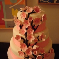 Cherry Blossom Cake 3 Tiered chocolate cake/buttercream filling. Covered in home-made MMF. Gumpaste cherry blossoms.