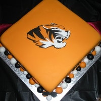 Mizzou Sports Groom's Cake Pineapple cake w/ pinapple cream cheese filling