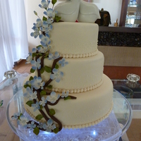 Hydrangea/branches Wedding Cake This is my first time decorating a wedding cake with branches. Inspired by CakeBabe1 beautiful Apple Blossom branches wedding cake in the...