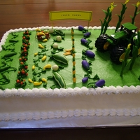 Farming Cake For Groom Gum paste corn stalks and veggies.