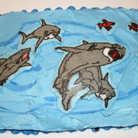 Shark Frozen Buttercream Transfer