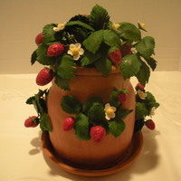 Strawberry Pot   Pot made of terracotta fondant; gumpaste flowers and leaves; gumpaste/fondant mix strawberry flavored berries.