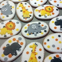 Shower Cookies Cookies to match shower theme 'Carter's Country Safari'