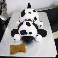 Spotted Dog Cake