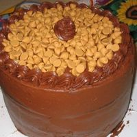 Chocolate Peanut Butter Cake 3 Layer chocolate peanut butter cake. Chocolate cake with choc peanut butter frosting between layers, iced in choc peanutbutter frosting,...