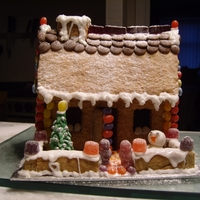 Gingerbread House #1 My first attempt at a gingerbread house.
