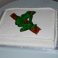 Tree Frog Groom's Cake spice cake w/cream cheese icing. piping gel for the frog