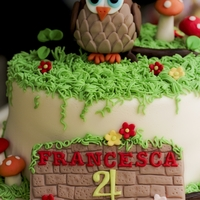 Woodlands/ Owl Themed Cake For my daughter's 4th bday http://www.facebook.com/SugarCrazybyJeslyn