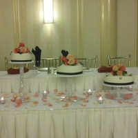 "Floating Tiers Nieces wedding cake, 6, 8,10,12, 14"" rounds. Fondant and satin ribbon covered. thanks for looking"