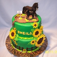 Sheila's Birthday Cake Finally made a cake for one of my best friends - she has waited a long time. Sheila raises Friesian horses and this was the perfect cake...