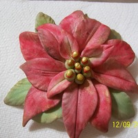 Gumpaste Poinsettia I used 3 different sized leaf cutters and a petal impression mat. Dry brushed with red, moss green and burgandy luster dust and highlighted...