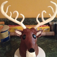"23Rd Birthday I hand sculpted this deer head from modeling chocolate.. My very first.. Will sit on top of a ""plaque"" cake."