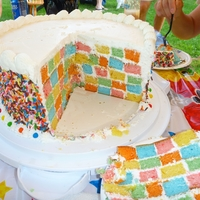 Checkerboard Cake hand made, not using one of the pan kits. each color was a different fruit flavor