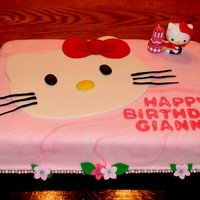 Hello Kitty Front Viewjpg