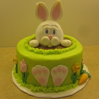 Easter Bunny Cake The whole thing is cake. The head of the bunny is made from a mini wonder mold. There are toothpicks in the ears though.