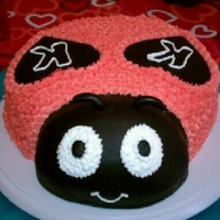 Ladybug Birthday cake for 2 year old niece, her birthday is on Valentine's Day.