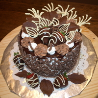 Chocolate Extravaganza Mud cake with a ganache on top and chocolate all over. Made with love to my husband :)