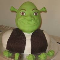 Shrek   Chocolate cake and RKT head. All edible except eye lashes.