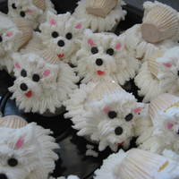 Poedel Kolwyntjies   Poodle cupcakes decorated with buttercream icing. Another idea that I got from CC! Thanks.
