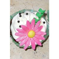Daisy Cupcake Cupcakes with buttercream icing topped with a pink daisy, green curlicue, and black sugar pearls.