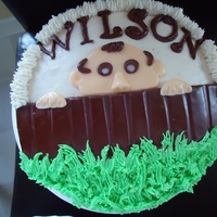 Wilson Cake Black forest cake covered in MMF