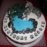 Zebra Cake Wilton Zebra paper, bc icing, fondant stones and piping gel for water. orange ribbon around base.