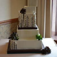 "Succulents And Birch Branches The bride for this cake had very specific words to describe her cake... but no real specific ideas...avante garde, elegant, natural, ""..."
