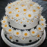 Daisies And Dots I want to let everyone know that I received RAVE reviews on this fondant....I used Jennifer Dontz chocolate fondant for this cake...I am so...
