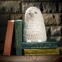 Harry Potter Books & Hedwig My second cake created for my niece's birthday. Each book is a different cake flavor with vanilla buttercream & vanilla fondant...