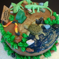Reptiles Theme all reptiles are handmold in fondant except for the alligators and frogs are plastic toys. rocks are chocolate cover and edible marker are...