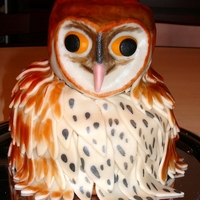 Tyto Alba I promised to make an owl cake, a real barn owl. The children were so pleased, that they didn`t want to eat it :-))). But they did, of...