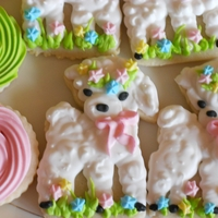Spring Lamb Key lime sugar cookies with Antonia 74's royal icing (with key lime flavoring added). Wanted to make Easter lambs