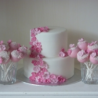 2 Tier Cake With Matching Cakepops