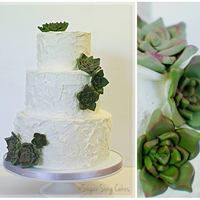 "Rustic Buttercream With Gum Paste Succulents Rustic buttercream with gum paste succulents in 9""/7""/5""."
