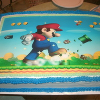 Super Mario Brothers Cake   I made this cake for my great newphew.Chocolate cake with Buttercream Icing