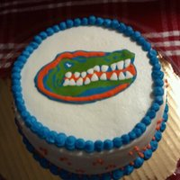 Gator Cheesecake   This is a NY style cheesecake, iced with buttercream. Gator is made of royal icing.