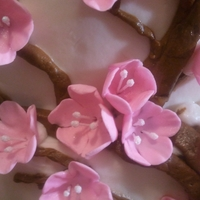 Cherry Blossom   Butter wedding cake, gumpaste cherry blossoms