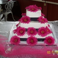 Gerbera Daisies The wedding was a black, white & Fuchsia colored theme. The Cake is a white chocolate with buttercream icing, Satin Ribbons and Silk...