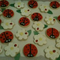 Ladybug Cookies   decorated with roal icing