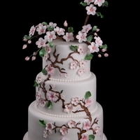 Asian Themed Cherry Blossom Wedding Cake The couple really wanted something different and just loves cherry blossoms. I hand painted the branches and then extended them as the...