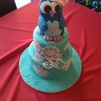 This Was Made For My Daughters Birthday On Christmas Eve She Is Crazy About Owls Thanks For Looking this was made for my daughter's birthday on Christmas eve she is crazy about owls thanks for looking