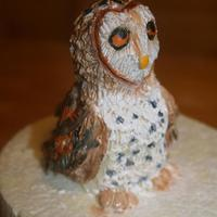 A Modeling Chocolate Barn Owl I Got Inspired To Make Him After Making A Snowy Owl In A Class With Kim Simons *A modeling chocolate barn owl. I got inspired to make him after making a snowy owl in a class with Kim Simons!