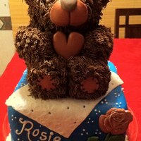 3D Teddy Bear I used a 3D cake pan for the bear and put it on top of a square pound cake covered in fondant I covered the bear in buttercream using a...