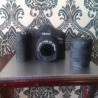 Cannon D5 My first camera. The lens is made from sugar.