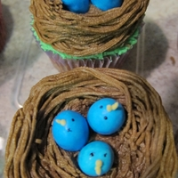 Baby Bluebird Cupcakes Grass tip used for the next. The bluebirds are mini Robin Egg Whoppers with fondant beak and dots of black dye for eyes.