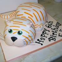Ginger Cat Sponge cake, covered in fondant and painted with orange stripes